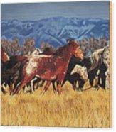 Joe's Horses Wood Print