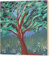 Johnny Appleseed Wood Print