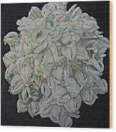 Joshua Tree Bloom Mandala Wood Print