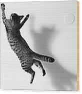 Jumping Cat Wood Print