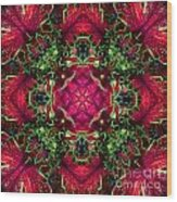Kaleidoscope Made From An Image Of A Coleus Plant Wood Print