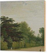 Kensington Gardens Wood Print
