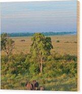Kenya, Maasai Mara, Hot Air Ballooning Wood Print