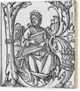 King David (d Wood Print