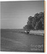 Kingsland Point Wood Print