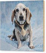 Kippy Beagle Senior Wood Print