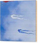Kites On Ice Wood Print