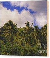 Koolau Mountains Wood Print