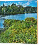 Lake Abanakee In The Adirondacks Wood Print by David Patterson