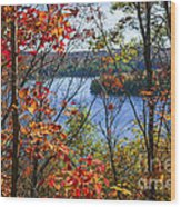 Lake And Fall Forest Wood Print