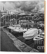 Lake Maggiore Bw Wood Print