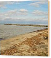 Lake Ontario Shoreline Wood Print