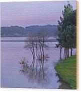 Lake Pateira V Wood Print