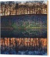 Lake Shore Wood Print