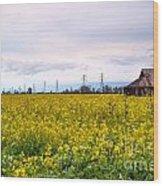 Landscape 22 P Sac Ca Wood Print