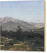 Landscape In Dauphine Wood Print