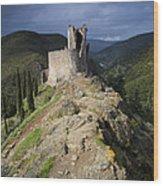 Lastours Castle Wood Print by Ruben Vicente