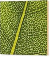 Leafy Details Wood Print