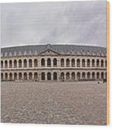 Les Invalides - Paris France - 011310 Wood Print by DC Photographer
