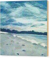 Lido Beach Evening Wood Print