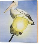 Light Pelican Wood Print