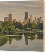 Lincoln Park Lagoon Chicago Wood Print