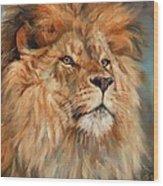 Lion Wood Print by David Stribbling
