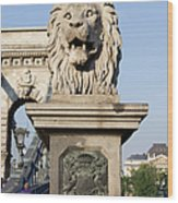 Lion Sculpture On Chain Bridge In Budapest Wood Print