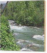 Little Susitna River  Wood Print