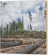 Logpile At A Clear Cut Area Wood Print