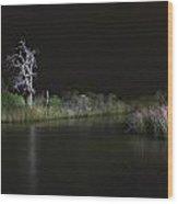 Lone Sentinel. Wood Print