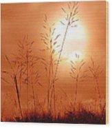 Lonely Planet Wood Print by Nirdesha Munasinghe