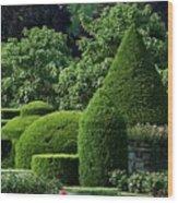 Longwood Gardens Wood Print
