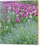 Longwood Gardens, Spring Flowers Wood Print