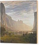 Looking Down Yosemite Valley Wood Print