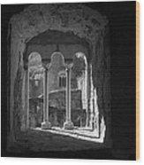 Looking Through A Window Wood Print