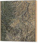 Lower Deschutes River Wood Print by Pete Chadwell