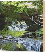 Lower Granite Falls 1 Wood Print
