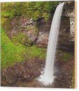 Lower Hills Creek Falls Wood Print