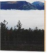 Lure Wood Print