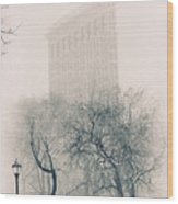 Madison Square Park Wood Print