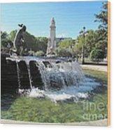 Madrid Fountain Wood Print