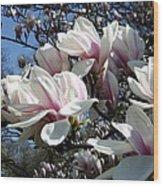 Magnolia  Twig Wood Print