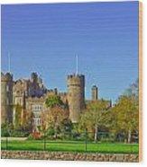 Malahide Castle  Wood Print
