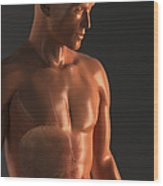 Male Figure With Digestive System Wood Print