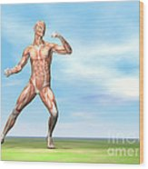 Male Musculature In Fighting Stance Wood Print