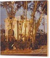 Mansion Landscape Wood Print