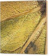 Maple Leaf Detail Wood Print