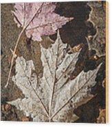 Maple Leaves In Water Wood Print