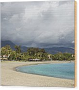 Marbella Beach Wood Print